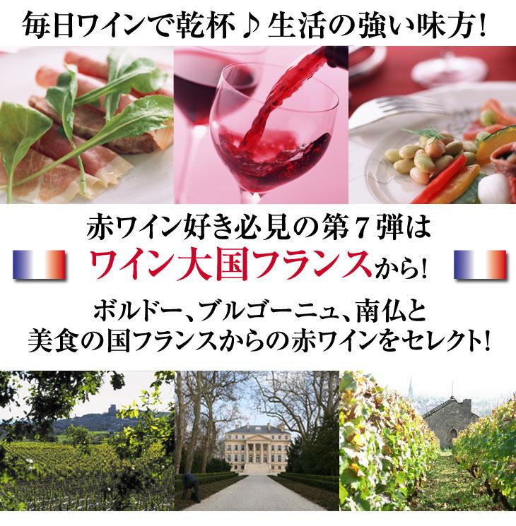 ボルドー、ブルゴーニュ、南仏と美食の国フランスからの赤ワインをセレクト!