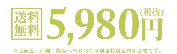 76415_02.jpg