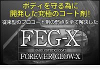 ボディを守る為に開発した究極のコート剤「FEG-X」