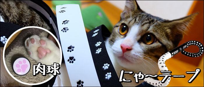 ポケマル にゃ~テープ