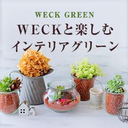 WECKと楽しむインテリアグリーン