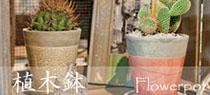 信楽焼 山草鉢