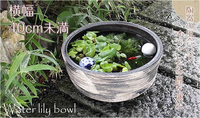 40cm未満の睡蓮鉢