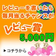 レビューを書いて5000円