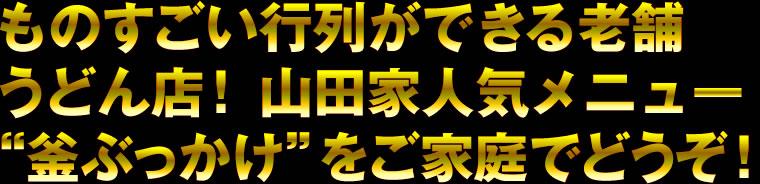ものすごい行列ができる老舗うどん店!山田家人気メニュー「釜ぶっかけ」をご家族でどうぞ!