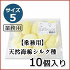 【業務用】天然海綿 シルク種 サイズ5(約5cm)1袋10個入り きめが細かく、崩れにくい弾力性 100%天然 ソフトな肌ざわり 肌にやさしい