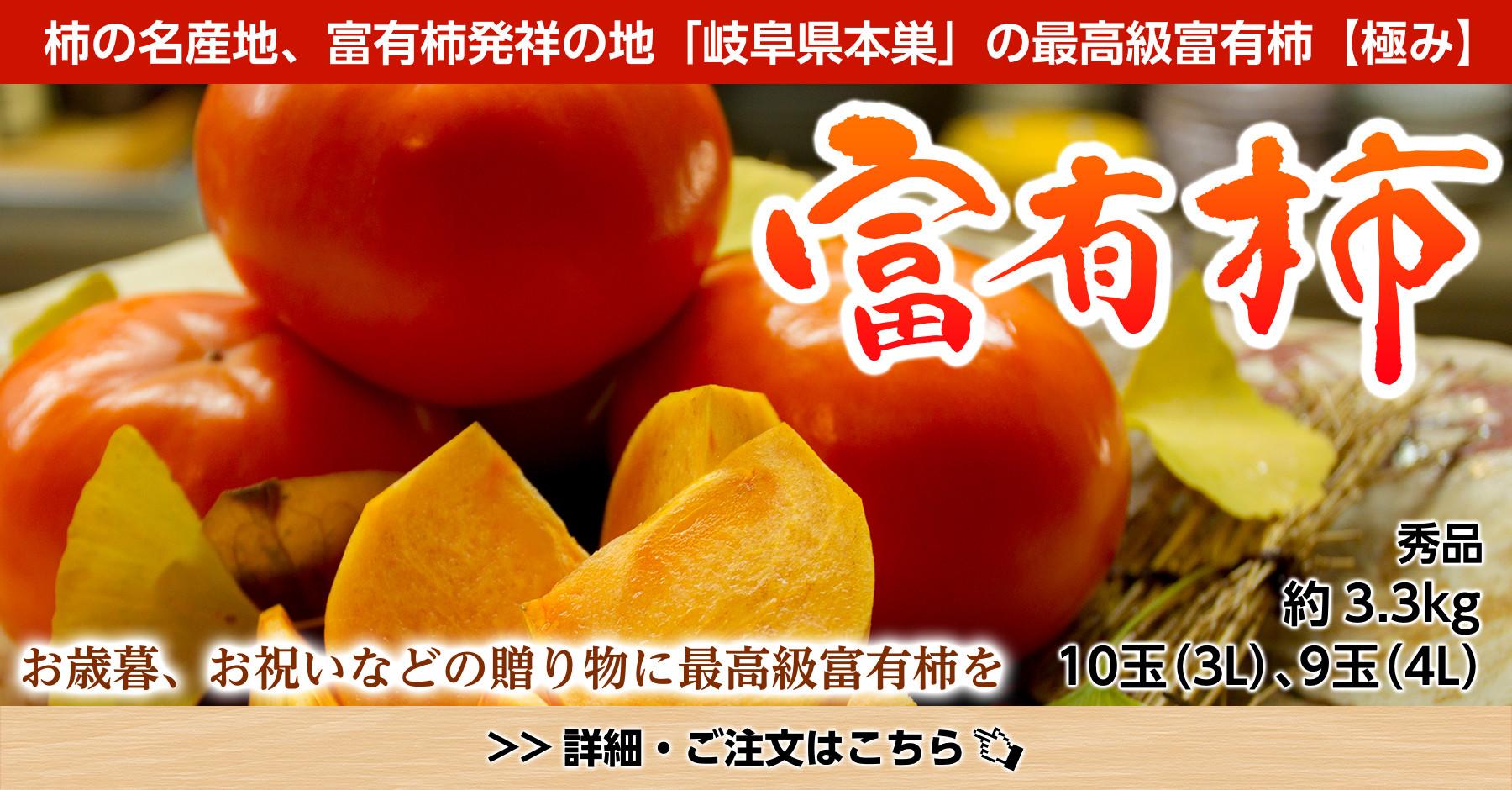 秀品岐阜県本巣産最高級富有柿【極み】3.3kg