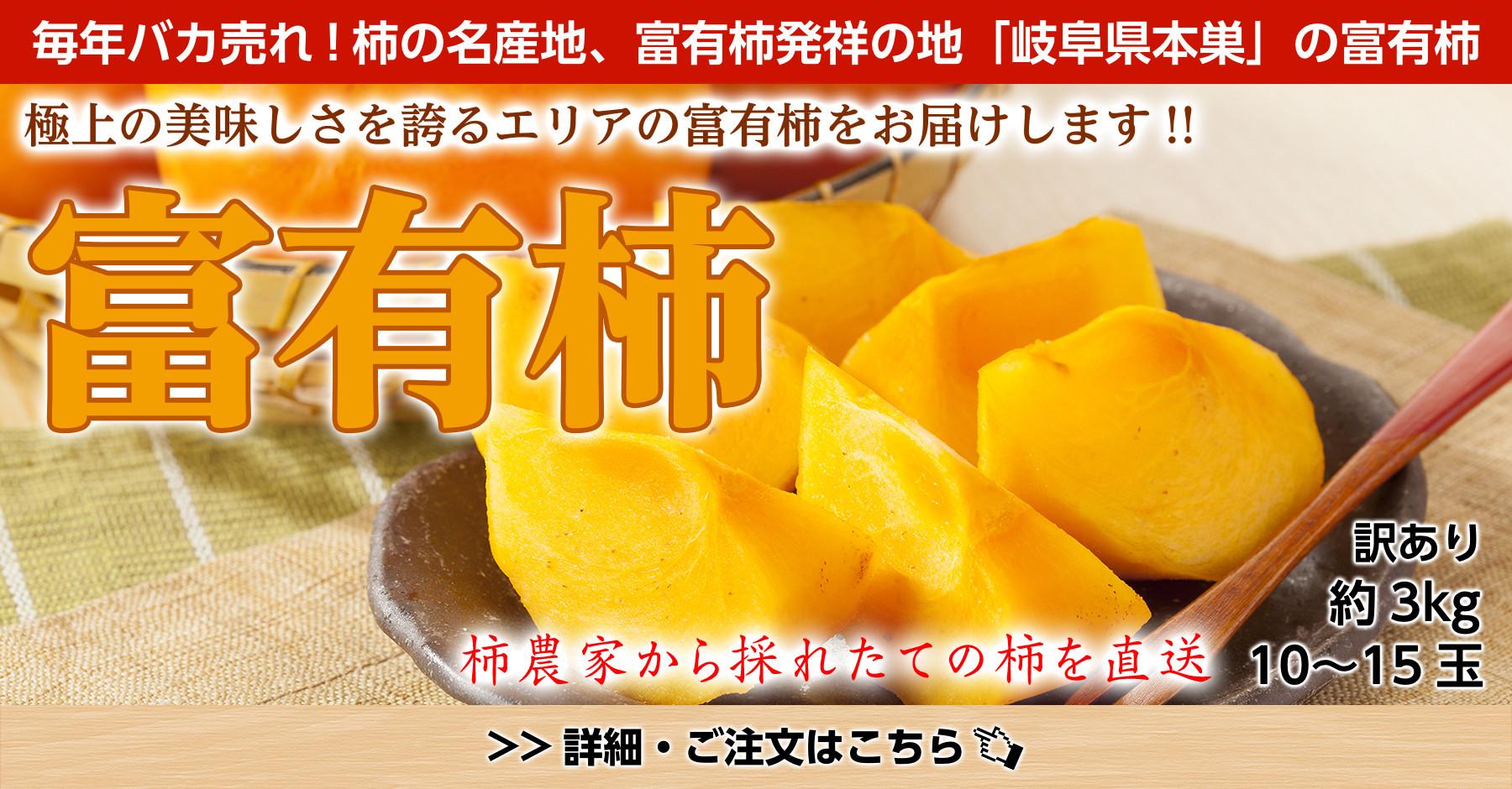 訳あり岐阜県本巣産富有柿3kg
