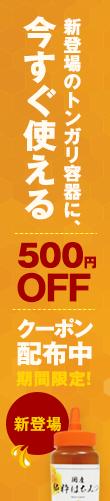 500円OFFクーポン