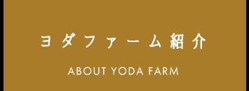ヨダファーム紹介