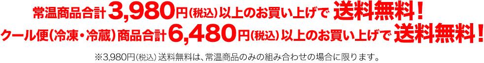 6600円以上で 送料無料