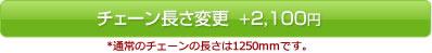 チェーンサイズカスタム +2000円