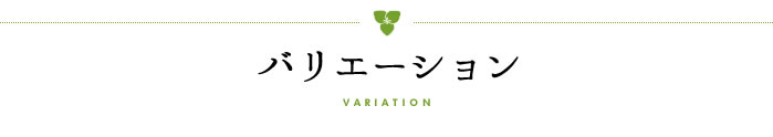 【タイトル】バリエーション