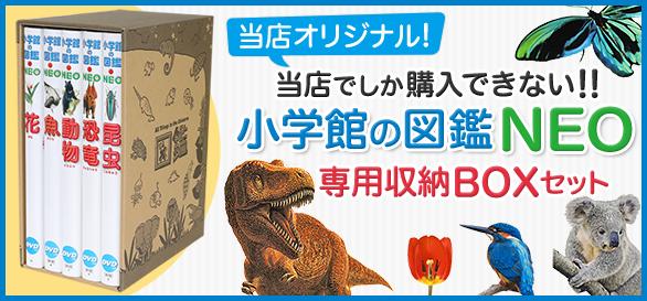 小学館の図鑑専用BOXセット