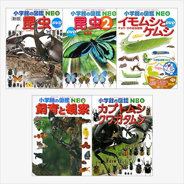 昆虫大好き!5冊セット