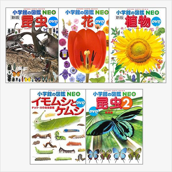植物と昆虫のイチオシ5冊セット