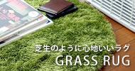 GRASS RUG�@�O���X���O